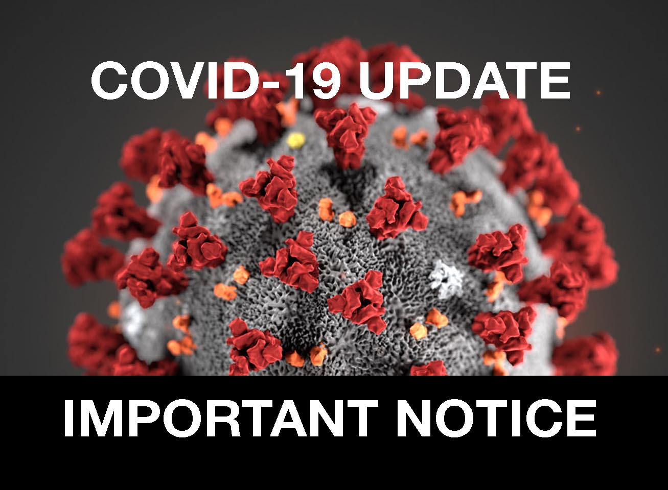 COVID-19 Update 11 May 2020